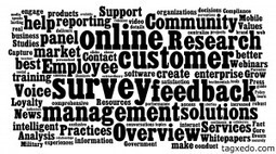 The Value of Enterprise Feedback Management Vendors   Customer Experience   Scoop.it