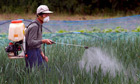 Pesticides could cost sub-Saharan Africa $90bn in illness bill, UN warns | YOUR FOOD, YOUR HEALTH: #Biotech #GMOs #Pesticides #Chemicals #FactoryFarms #CAFOs #BigFood | Scoop.it