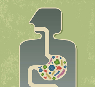 Altered Gut Microbes Key to Bypass Surgery Success | HMS | Microbe | Scoop.it