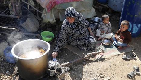 Au Liban, la spirale de l'endettement des réfugiés syriens | Maghreb-Machrek | Scoop.it