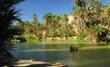Programme Oasis-Tafilalet Lancement des chantiers-phares de 2012 - Aufait Maroc | Ecotourisme au Maroc | Scoop.it