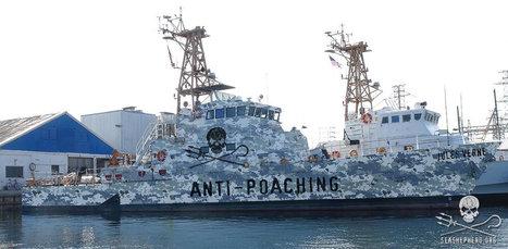 USA : le nouveau navire Jules Verne protégera la réserve marine de l'île Cocos | Jules Verne News | Scoop.it