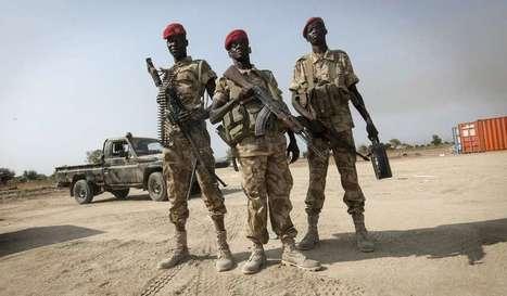 Rebeldes acusam Exército do Sudão do Sul de furar acordo de cessar-fogo | Conflitos mundiais Geo C 2014 | Scoop.it