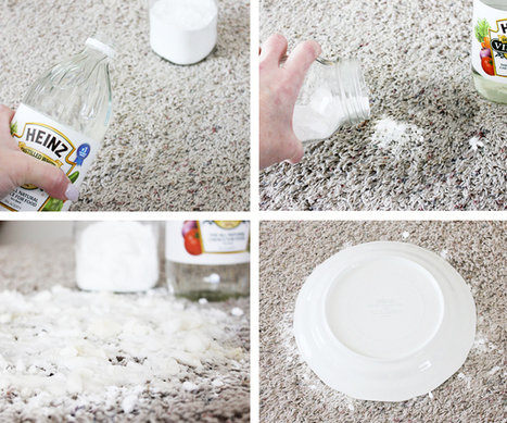 How To Get Rid of Pet Stains On Carpet | One Good Thing by Jillee | Pet Stain Removal Tips from Chandler's Expert Cleaners | Scoop.it