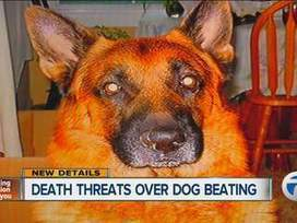 Police urging calm as man who killed German Shepherd with baseball bat gets death threats | BEST GSD VIDEOS | Scoop.it