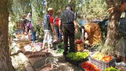 L'Algérie veut réduire sa dépendance alimentaire grâce à l'agro-écologie | Chimie verte et agroécologie | Scoop.it