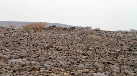 One Per Cent: Giant archaeological trove found in Google Earth | History | Scoop.it