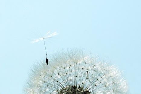 Sustainable Business Models | Futurewaves | Scoop.it