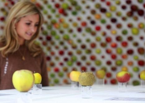 The Real Apple Store, un apple store qui vend vraiment des pommes | streetmarketing | Scoop.it
