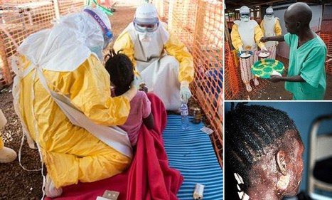 Experimental Ebola vaccine to be tested on humans | Sustain Our Earth | Scoop.it