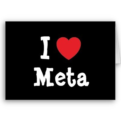 MetaGopher; a meta search engine | A cool selection of cool search engines with extra flavours | SearchTools | Scoop.it