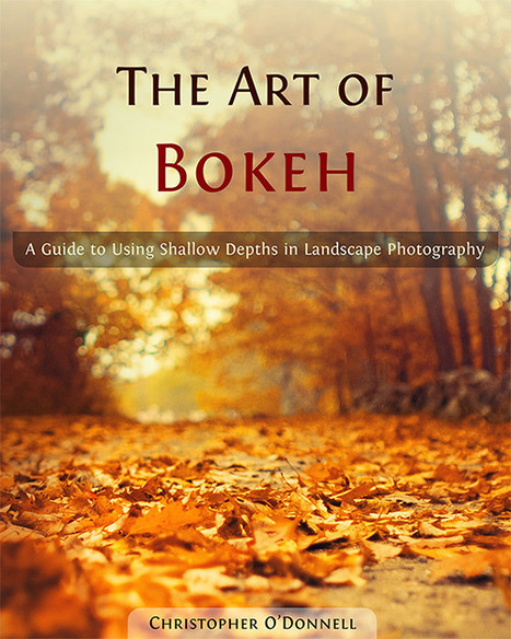 the art of bokeh: a guide to using shallow depths in landscape photography | For the love of Photography | Scoop.it