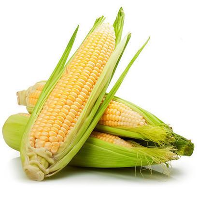Corn -Loose (each) - Harris Farm Markets | Corn-multiple | Scoop.it