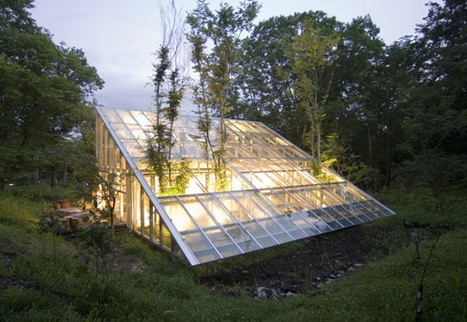 Sustainable Architecture in Japan - a greenhouse for a house! | hiroshi iguchi camouflage house 3 | Scoop.it