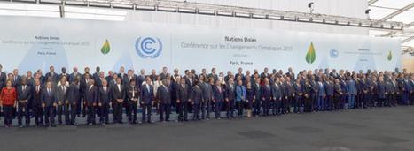 COP 21 : les chefs d'Etat s'affrontent à fleurets mouchetés | Mes passions natures | Scoop.it