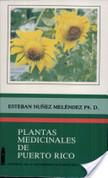 Plantas medicinales de Puerto Rico. Ciruela | Ciruela (Spondias Purpurea L.) | Scoop.it