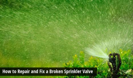 How to Repair and Fix a Broken Sprinkler Valve | Turfrain | Turfrain | Scoop.it