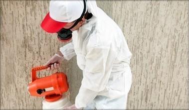 Gilbert Pest Control – Gilbert, AZ Pest Control, 85296 | Pest Control Gilbert | Scoop.it