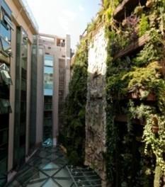 El Jardín Vertical más grande del mundo, joya oculta en el Hotel ... | Cultivos Hidropónicos | Scoop.it