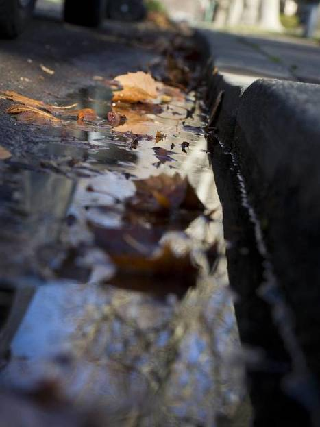 Stormwater can't go to waste in drought | Sustain Our Earth | Scoop.it