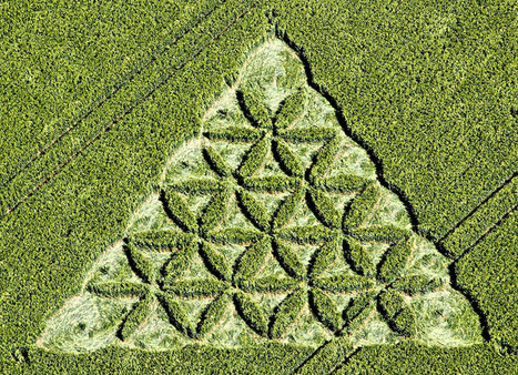 Crop Circle at Waden Hill, Nr Avebury, Wiltshire. Reported 1st July 2012. | UFO Matrix Magazine | Scoop.it