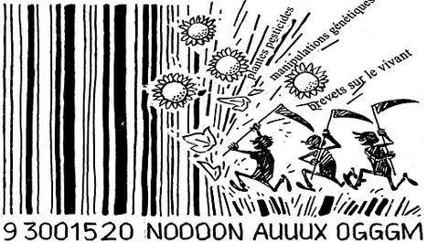Les OGM mis en échec par les insectes (sélection naturelle) | Abeilles, intoxications et informations | Scoop.it