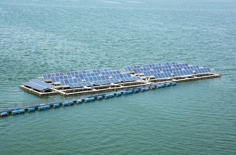 Floatovoltaics: Promising solutions for solar energy | Green Innovation | Scoop.it