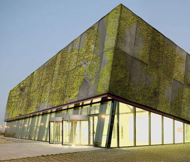 New Living Walls Use 'Biological Concrete' to Reduce CO2 | Sustainable Futures | Scoop.it
