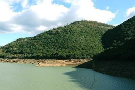 Καθαρά τα νερά της λίμνης Λάδωνα   ΔΑΦΝΗ ΚΑΛΑΒΡΥΤΩΝ   Scoop.it