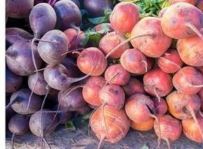 La betterave, une plante qui vous veut du bien ! | News - actu - Biblio anti-cancer | Scoop.it