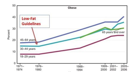 9 Lies About Fat That Destroyed The World's Health   Coconuts a sustainable food source   Scoop.it