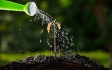 Study Proves Sustainable Farms, Organic Farming Beats Factory Farms | Food & Farming | Scoop.it