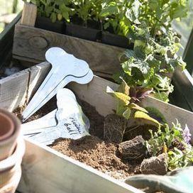 La check-list du jardinier : Avril donne le coup d'envoi des beaux ... - RTL.be | Espaces Verts | Scoop.it