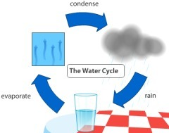 The Water Cycle | Primary School Teaching | Scoop.it