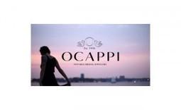 Le joaillier Ocappi propose un service d'essai gratuit à domicile de ses bagues   eCommerce-Corner   E-commerce Corner   Scoop.it