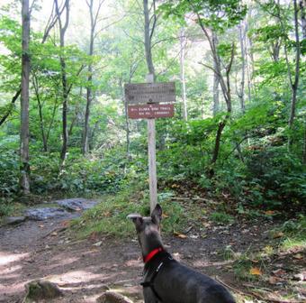 Nebraska Notch Trail   Fun for Dogs!   Scoop.it