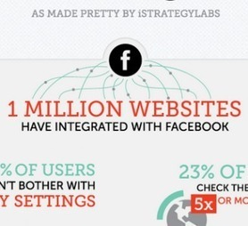 Infographic: Social Media Statistics for 2013 | Managing options | Scoop.it