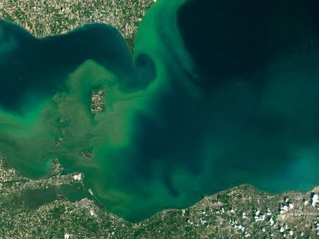 Poisoned Waters from the Pacific to the Heartland | Sustain Our Earth | Scoop.it