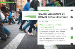 How Agile Sales Organisations Are Improving The Experience (Chapter 2) | I can explain it to you, but I can't understand it for you. | Scoop.it