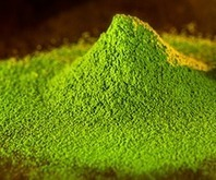 Matcha Sole Shots Now Use Ceremonial Grade Matcha | Vertical Farm - Food Factory | Scoop.it