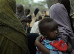 Five killed as Somali gunmen loot food aid from camp   Food issues   Scoop.it