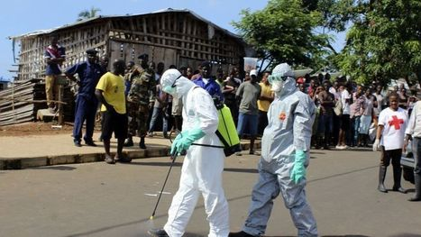 #HORRIFYING '#Ebola Victim Bodies Found, Piled up in Sierra Leone Hospital' | News You Can Use - NO PINKSLIME | Scoop.it