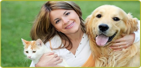 Use Internet for Shopping Good Quality Pet Essential | mileytrott | Scoop.it