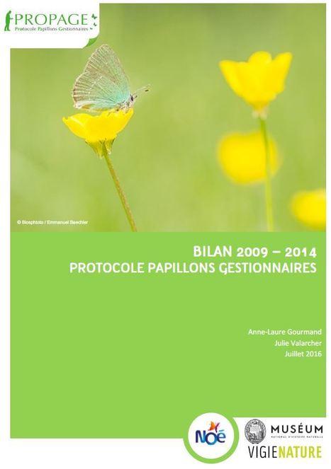 Plus de prairies, plus de papillons! | Vigie Nature | Insect Archive | Scoop.it