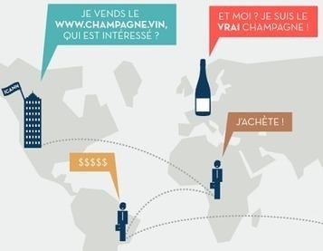 .vin et .wine : extension de domaines internet, ou de la lutte pour la protection des IG ?   Le vin quotidien   Scoop.it