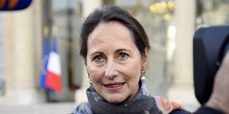 Ségolène Royal demande aux jardineries de ne plus vendre librement de Roundup | Agriculture en Dordogne | Scoop.it