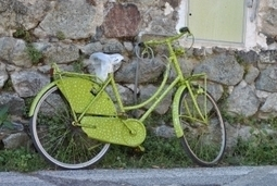 Tourisme vert : ça roule pour le cyclotourisme ! | L'espace info pro des offices de tourisme de Bièvre-Valloire | Scoop.it