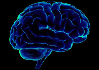 Study Finds Brain System for Emotional Self-Control | Brain, emotions and neuroscience | Scoop.it