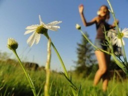 Mindfulness Exercises - Health, Weight, Fitness and more... | health alternatives | Scoop.it