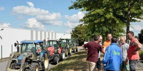 Crise du lait: reprise des négociations mardi à Laval | Agriculture en Dordogne | Scoop.it